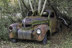 1937 – 1939 Chrysler Imperial car – in poor condition (Alan Vernon.) Tags: sonya6300 old relic rusting rusty rust historic car automobile abandoned decay decaying yesteryear trees chrysler imperial 1937 1938