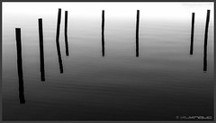 acht - 8 - eight (Schnitzel_bank) Tags: see sea otto acht eight reflection spiegelung grey grau monochrome schwarzweiss sw bw blackandwhite holz wood wasser landschaft landscape seascape stillleben minimal abstrakt abstract