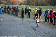 2018.11.10_CROSSCNTRY_WomensMens_VanCortlandtPark_JesiKelley-707 (psal_nycdoe) Tags: menscrosscountry nycpsal nycpsalsports nycsports newyorkcitypublicschoolsathleticleague psal2018crosscountry psal2018crosscountrychampionships psalcrosscountry teenagersplayingsports womenscrosscountry highschoolsports kidsplayingsports 201819 cross country psal public schools athletic league van 201819crosscountrycitychampionships xtry xcountry nycdoe new york city high school championships vancortlandtpark cortlandt jesi kelley jessica nyc newyorkcity newyork usa department education boys girls championship