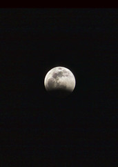 Total Lunar Eclipse January 20,2019 (justhighlo) Tags: moon full lunareclipse eclipse totaleclipse