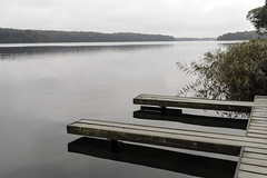 Silent lake in the north (Burminordlicht) Tags: lake lakeside schaalsee stille silence ruhe see friedlich peaceful peacefulness