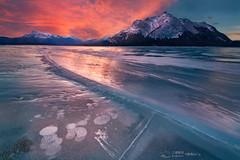 Sky on Fire (Celia W Zhen) Tags: abrahamlake frozenbubbles alberta ice bubbles celiazhenphotography 静逸celia摄影 三栖影社