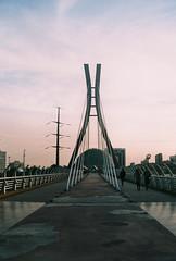 somewhere by the tabiat bridge (Aspa Tz) Tags: iran analogue travel minolta expired colour tehran street autumn city