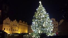 Prague at Christmas (Art of MA Foto Stud) Tags: prague oldtownsquare staromák czechrepublic winter christmas decorations tree