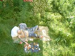 Summer memories (StrategieDerOrdnung) Tags: sommer wald tal heimat bayern münchenland munichbanlieue été lété forêt bois forest summer summertime bavaria bavière