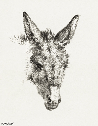 Head of a donkey (1818) by Jean Bernard (1775-1883). Original from The Rijksmuseum. Digitally enhanced by rawpixel.