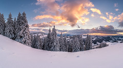 Let it Snow Let it Snow (PhiiiiiiiL) Tags: urnäsch kantonstgallen schweiz ch hochalp appenzell alpstein snow schnee winter winterwonderland panorama pano switzerland sunset sonnenuntergang