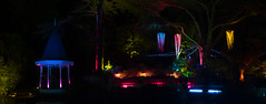 Botanical Gardens (Wozza_NZ) Tags: wellington botanicalgardens karori lighting nightphoto nightphotography gardenmagic