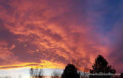January 30, 2019 - A stunning sunset in Thornton. (ThorntonWeather.com)