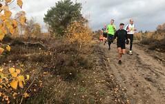 haarlerbergloop 10 km (46)