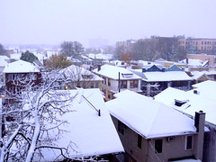 The First Snowfall Today (dimaruss34) Tags: newyork brooklyn dmitriyfomenko image sky snow buildings trees winter houses roofs
