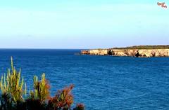 Adriatico - Adriatic (rocco944) Tags: rocco944 torredellorso lecce puglia italy mareadriatico salento canoneos650d