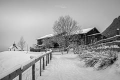 Snow-Capped II (ludwigriml) Tags: längenfeld tyrol austria at