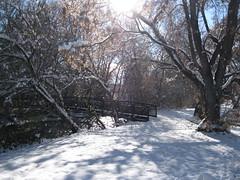 IMG_5166 (August Benjamin) Tags: provocanyon provorivertrail provoriver provo orem snow utah mountains