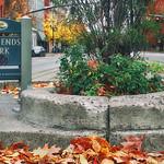 It's Autumn at Mill Ends Park thumbnail