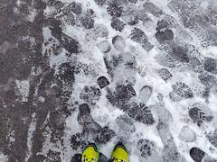 Slippery run (gali_nette) Tags: running shoes snow