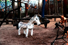 020/365 - Little uncle, is that you? (Sinuhé Bravo Photography) Tags: canon eos7dmarkii horse playground creepy whitehorse