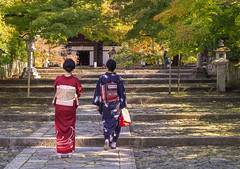 Dressed for Culture Day (Tim Ravenscroft) Tags: kimono shinnyodo temple kyoto japan hasselblad hasselbladx1d happyplanet
