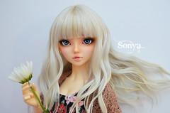 DSC_2033 (sonya_wig) Tags: fairytreewigs wig bjdwig minifeewig bjd bjdminifee minifeechloe handmadedoll bjddoll dollphoto fairyland fairylandminifee minifee chloe bjdphotographycoloringhair