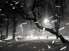 And winter came (wojciechpolewski) Tags: winterphotography winternight winterevening winter snow snowing snowyweather snowyevening snowyday wpolewski kedzierzynkozle poland polska photo blackwhite blanconegro blancoynegro blackandwhite blacknwhite bw bnw monochromatic monochromatico monotone mo greyscale noncolour stormweather snowstorm streetlights streetphotographer streetphotography