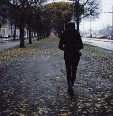 Toward the Terra (fromfarbeyond) Tags: mediumformat rain stockholm autumn color analog film expired 160vc portra kodak carlzeiss planar 500cm hasselblad