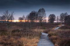 Follow the Path (Rob Christiaans  Landscape & Wildlife) Tags: canon5dmkiii canonef70200f4 leend09hardgrad leefilters luminositymasks gitzo sunset brackvenn hogevenen highfens belgium robchristiaans lpm