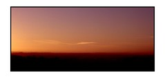 Kite (blueP739) Tags: olympus om4 om1n olympusom om3ti om2sp om10 om1 om2n om3 om olympusom1 orange olympusplustekplustek7200om4 plustek7200 pussy sensia100 sunset sunlight sunrise chilternhill kite buzzard birds mist landscape fuji film