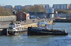 Haven Supporter (3) @ KGV Lock 08-01-19 (AJBC_1) Tags: london workboat predatorcharters ©ajc dlrblog ship boat vessel england unitedkingdom uk northwoolwich eastlondon newham londonboroughofnewham nikond3200 royaldocks londonsroyaldocks damen1500pushycat ajbc1 greatbritain gb tug havensupporter collinswateragelighterage marineengineering tugboat stantug1205 damen damenshipyardsgroup docklands kgvlock kinggeorgevlock assassin