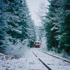 In the forest ! (Sivispacem...) Tags: sony a7ii sonyalpha zeiss 35mm28 train old vintage forest mountains pinetree snow white x5845 auvergne france