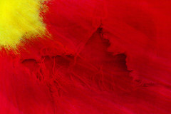 Abstract Floral (andycurrey2) Tags: smileonsaturday onesinglepetal flower garden flowers red yellow abstract texture