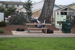 IMG_10954 (mudsharkalex) Tags: california pacificgrove pacificgroveca loverspointpark