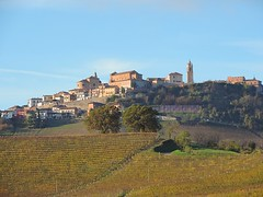 Barolo Langhe (Danilo_83) Tags: barolo langhe piemonte italia italy panorama colline