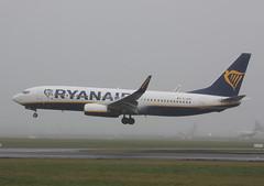 EI-GDK Boeing 737-8AS Ryanair (corkspotter / Paul Daly) Tags: eigdk boeing 7378as w b738 44806 6653 l2j 4ca93b ryr fr ryanair 2017 20171106 dub eidw dublin