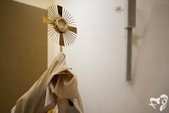 Llegada de los Signos a la Arquidiocesis