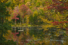 Autumn on a Vermont Pond (RobertCross1 (off and on)) Tags: a7rii alpha emount greenmountains ilce7rm2 newengland plymouth sony vt vermont autumn dock fall foliage forest fullframe lake landscape leaves mirrorless reflection reflections trees water fe85mmf18