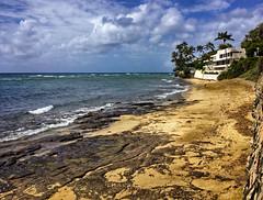 Diamond Head Beach (jcc55883) Tags: diamondheadbeach beachroad diamondheadroad hawaii oahu shore shoreline sky clouds ocean pacificocean luckywelivehi luckywelivehawaii hilife hilife808 808 808state islandsofaloha ipad