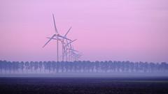 Alternative Energy (tvdijk19) Tags: explore windmills windmolens flevoland landscape landschap energie energy fujixt2 travel earlymorning haze fog mist mistig