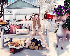 ♥♥♥ (♡♡ [[J E SSIE ]]♡♡) Tags: secondlife sl cute zenith kawaii girl winter oleander snow gift christmas dustbunny whimsical avatar lagom whatnext photography secondlifephoto