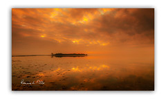 Softly Softly... (RonnieLMills 5 Million Views. Thank You All :)) Tags: rough island islandhill comber newtownards county down strangford lough high tide soft clouds reflections