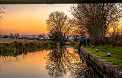 Getting a weigh (Peter Leigh50) Tags: grand union canal leicestershire landscape landschaft outside rural countryside farmland people sheep trees sky evening late afternoon november reflection reflections water calm fujifilm fuji xt2