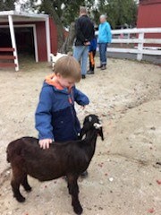 """Paul at the Petting Zoo • <a style=""""font-size:0.8em;"""" href=""""http://www.flickr.com/photos/109120354@N07/45523514415/"""" target=""""_blank"""">View on Flickr</a>"""