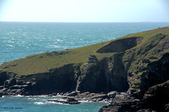 3KB03575a_C_2018-04-03 (Kernowfile) Tags: cornwall coast houselbay thelionsden rocks cliffs sea waves grass bushes sun cornish pentax pentaxforums