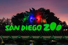 San Diego Zoo at sunset (Bob Worthington Photography) Tags: zoo122918 sandiegozoo canon7dmarkii canon70200f28lisii