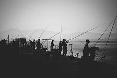 Something's fishy around here [Explored #26] (Cortez_CRO) Tags: zadar zadarcounty croatia hr fishing competition 2018 fish silhouette adriatic sea jadran jadransko more summer