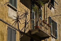 bellaitalia liguria la spezia (michael_obst) Tags: liguria bellaitalia street building sony sonyfe70300mm laspezia buildingfront architecture shadows balcony