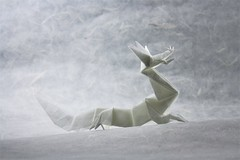 Eastern Dragon - Jun Maekawa (pierreyvesgallard) Tags: eastern dragon jun maekawa origami paper papercraft white