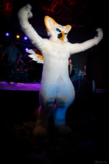 DSC08960 (Kory / Leo Nardo) Tags: pacanthro pawcon paw con pac anthro convention fur furry fursuit suiting mascot sona fursona san jose doubletree hotel california dance party deck animals costuming pupleo 2018