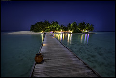 Full Moon Night (frankmartinroth) Tags: sony a7r3 15mm f45 wide voigtlander sky outdoor color maldives asia nature blue sunstar lines moonlight night darkness tropics water ocean palms