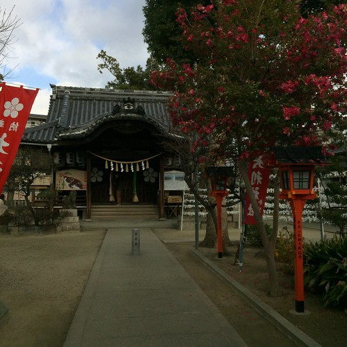 神社とサザンカの木
