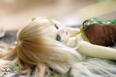 Heura (Kiliara Unia) Tags: mnf soodarkelf msd minifee heura fairyland cerberusproject cp des soo dark elf bjd abjd fairy
